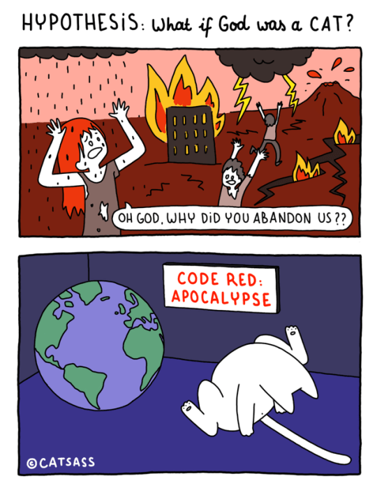 Cartoon - HYPOTHESIS: What if God was a CAT? OH GOD, WHY DiD YOU ABANDON US ?? CODE RED: APOCALYPSE CATSASS