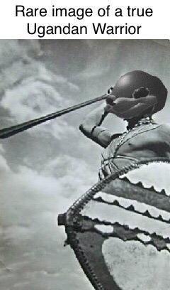 Ugandan Knuckles - Organism - Rare image of a true Ugandan Warrior