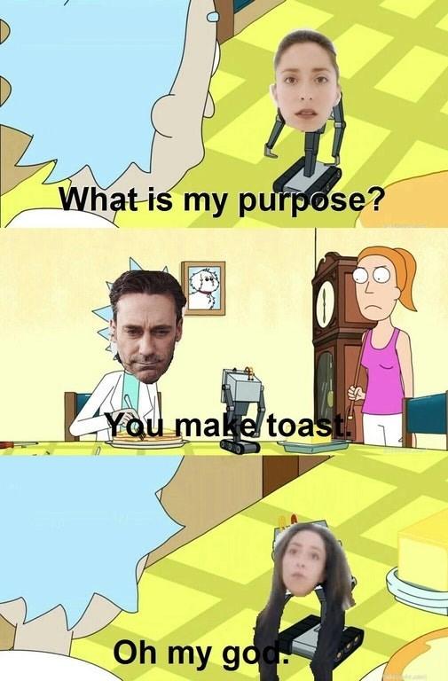 toaster purpose