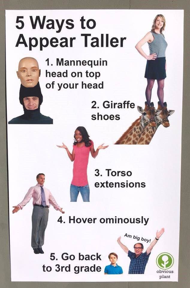 Poster - 5 Ways to Appear Taller 1. Mannequin head on top of your head 2. Giraffe shoes 3. Torso extensions 4. Hover ominously Am big boy! 5. Go back to 3rd grade obvious plant