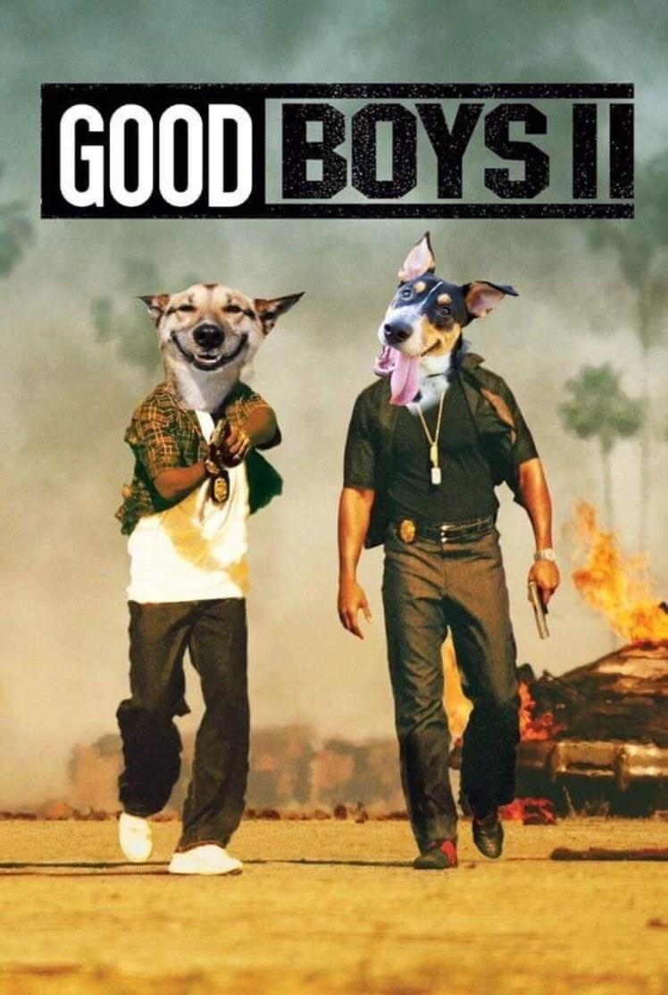 Poster - GOOD BOYS I