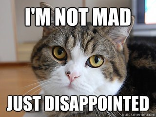 meme - Cat - IM NOT MAD JUST DISAPPOINTED guickmeme.com