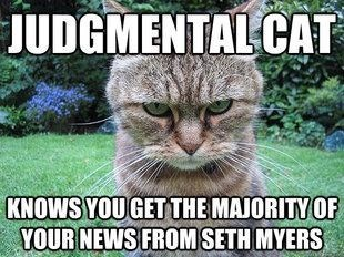 meme - Cat - JUDGMENTAL CAT KNOWS YOUGETTHE MAJORITY OF YOUR NEWS FROM SETH MYERS