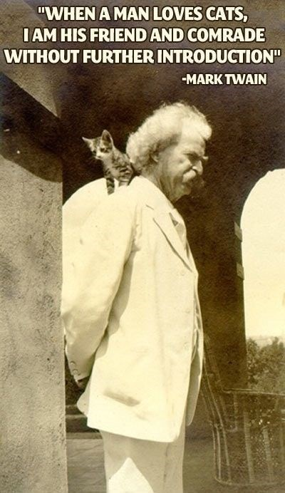 """Photography - """"WHEN A MAN LOVES CATS, IAM HIS FRIEND AND COMRADE WITHOUT FURTHER INTRODUCTION"""" MARK TWAIN"""