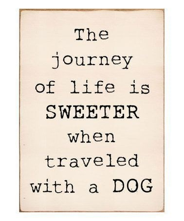 Text - The journey of life is SWEETER when traveled with a DOG