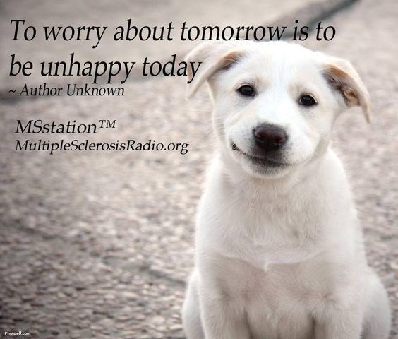 Dog breed - To worry about tomorrow is to be unhappy today Author Unknown MSstationTM MultipleSclerosisRadio.org Photos8.com