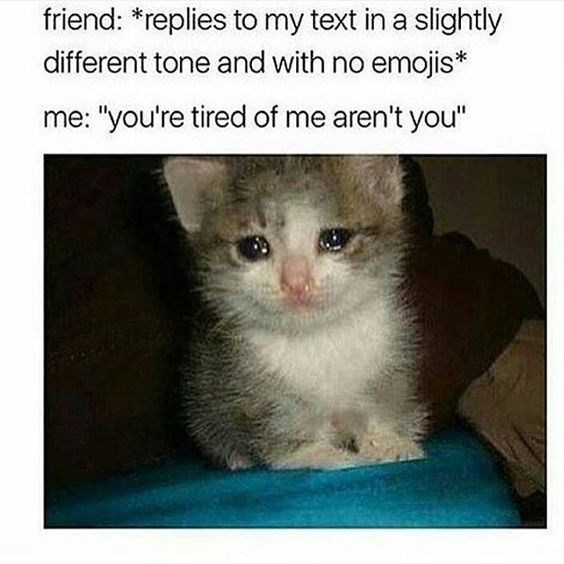 """Cat - friend: *replies to my text in a slightly different tone and with no emojis* me: """"you're tired of me aren't you"""""""