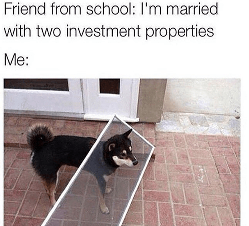 Canidae - Friend from school: I'm married with two investment properties Me:
