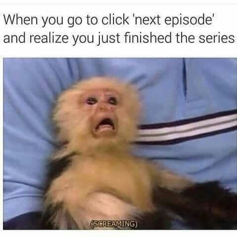 New World monkey - When you go to click 'next episode' and realize you just finished the series SCREAMING
