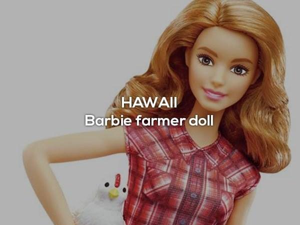 Hair - HAWAI Barbie farmer doll