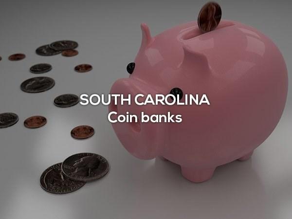 Piggy bank - SOUTH CAROLINA Coin banks