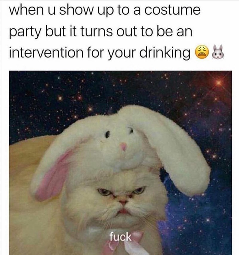 meme - Whiskers - when u show up to a costume party but it turns out to be an intervention for your drinking fuck