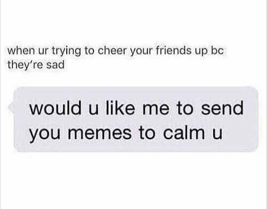 meme - Text - when ur trying to cheer your friends up bc they're sad would u like me to send you memes to calm u