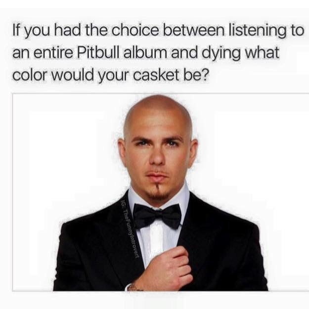 meme - Text - If you had the choice between listening to an entire Pitbull album and dying what color would your casket be? IG: TheFunnylntrovert