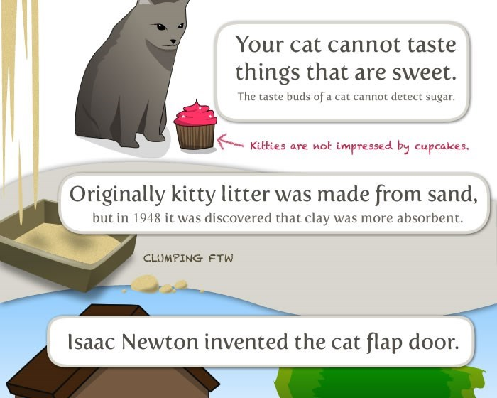 Cartoon - Your cat cannot taste things that are sweet The taste buds of a cat cannot detect sugar. Kitties are not impressed by cupcakes Originally kitty litter was made from sand, but in 1948 it was discovered that clay was more absorbent. CLUMPING FTW Isaac Newton invented the cat flap door.