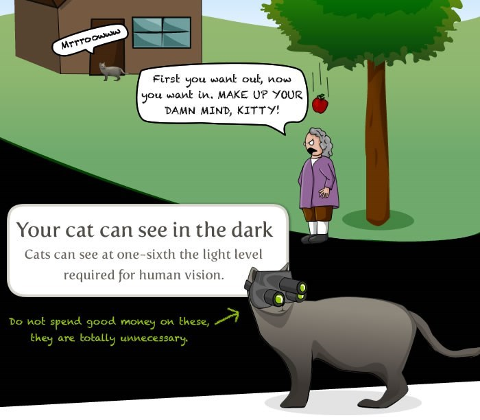 Cartoon - Mrrroowww First you want out you want in. MAKE UP YOUR DAMN MIND, KITTY! now Your cat can see in the dark Cats can see at one-sixth the light level required for human vision. Do not spend good money on these, they totally unnecessary are