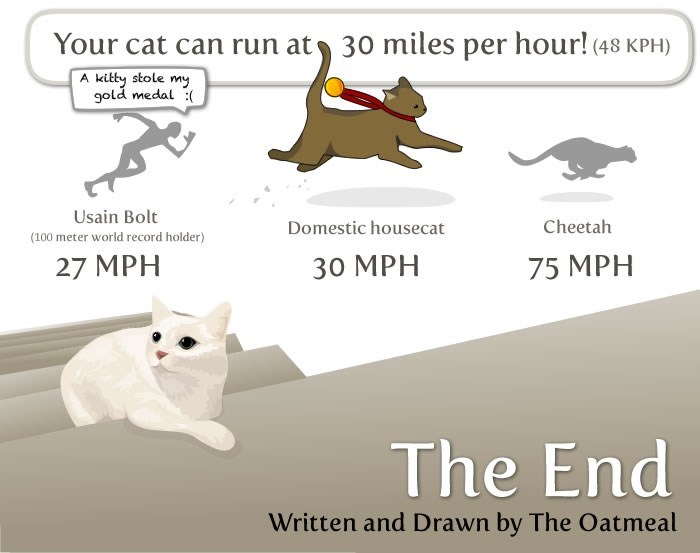 Text - Your cat can run at 30 miles per hour! (48 KPH) A kitty stole my gold medal ( Usain Bolt Cheetah Domestic housecat (100 meter world record holder) 30 МРН 27 MPH 75 MPH The End Written and Drawn by The Oatmeal