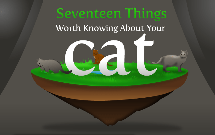 Text - Seventeen Things Worth Knowing About Your cat