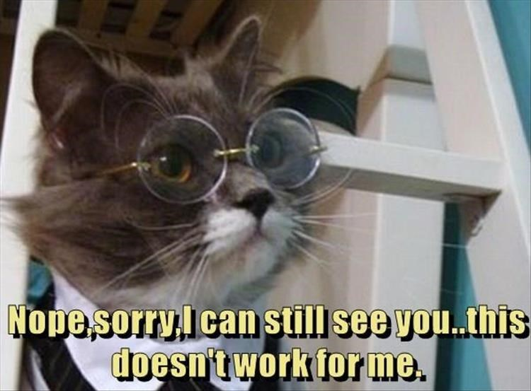 Caturday meme of a cat wearing glasses so it doesn't see you