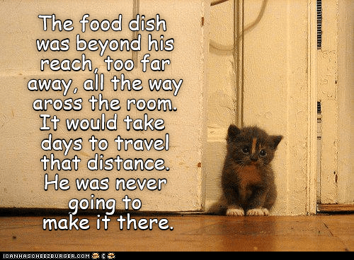 Text - The food dish was beyond his reach, too far away, all the way aross the room. It would take days to travel that distance He was never going to make it there. CANHASCHEE2EURGER CcOM