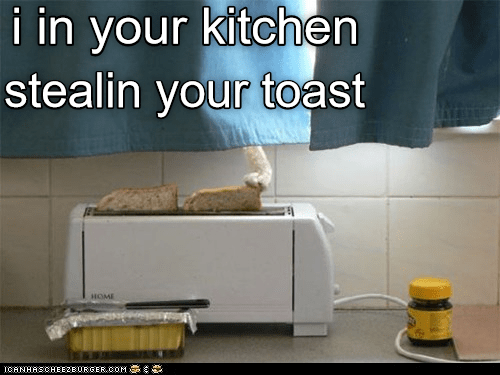 Product - i in your kitchen stealin your toeast HOME ICANHASCHEE2EURGER CoM