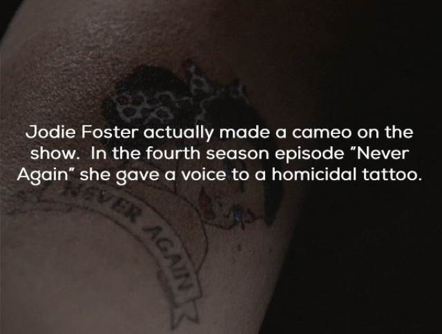 """Tattoo - Jodie Foster actually made a cameo on the show. In the fourth season episode """"Never Again"""" she gave a voice to a homicidal tattoo. ER AGAINTR"""