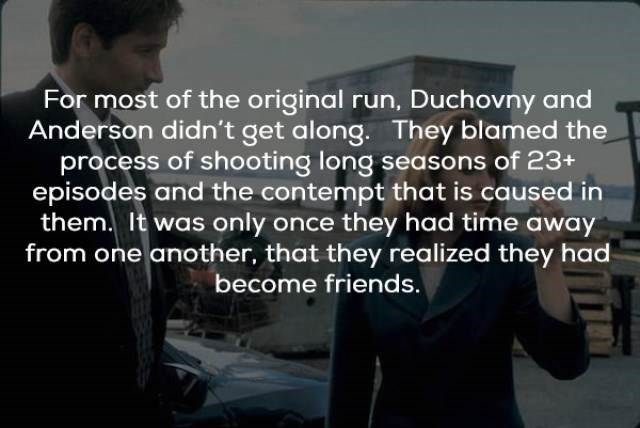 Text - For most of the original run, Duchovny and Anderson didn't get along. They blamed the process of shooting long seasons of 23+ episodes and the contempt that is caused in them. It was only once they had time away from one another, that they realized they had become friends.