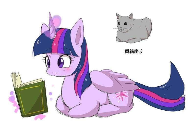 twilight sparkle kanachyoco acting like animals - 9114790144