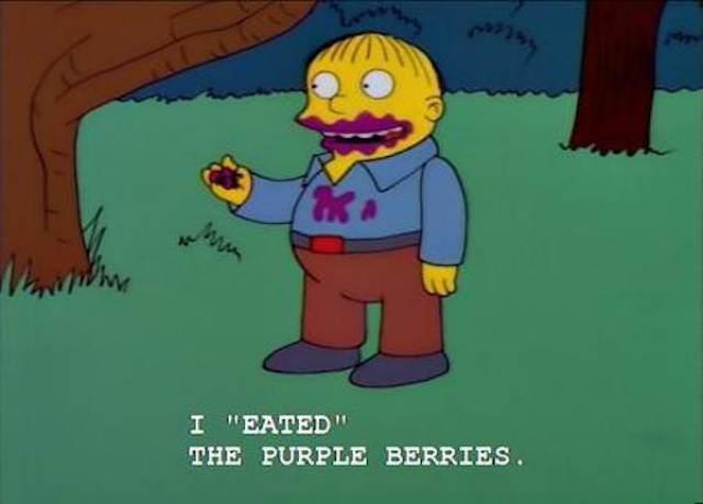 "simpsons ralph - Cartoon - I ""EATED"" THE PURPLE BERRIES."