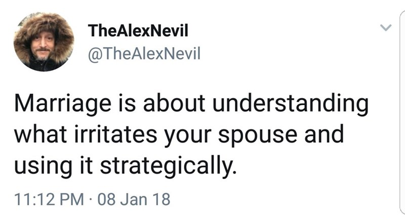 Text - TheAlexNevil @TheAlexNevil Marriage is about understanding what irritates your spouse and using it strategically. 11:12 PM 08 Jan 18