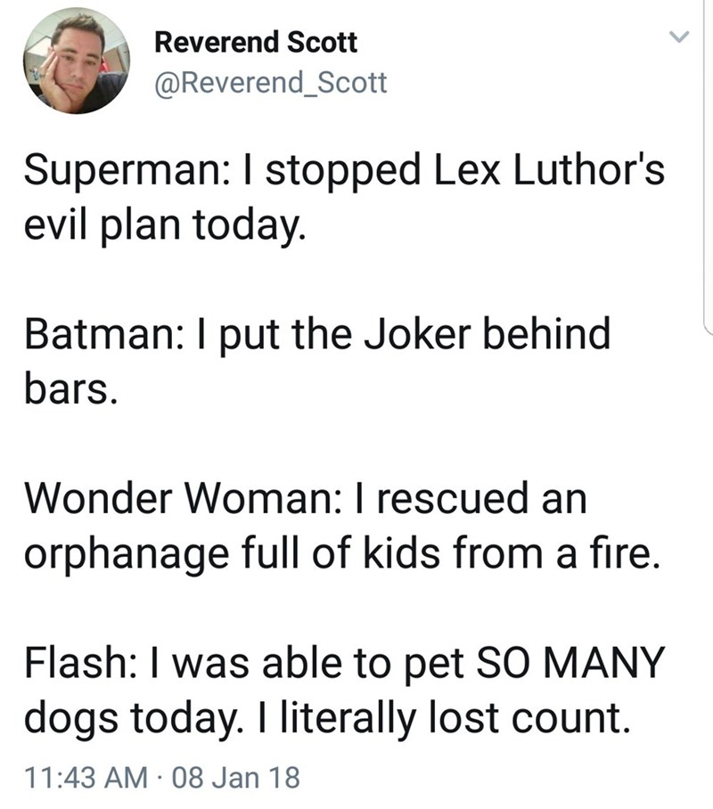 Text - Reverend Scott @Reverend_Scott Superman: I stopped Lex Luthor's evil plan today. Batman: I put the Joker behind bars Wonder Woman: I rescued an orphanage full of kids from a fire. Flash: I was able to pet SO MANY dogs today. I literally lost count. 11:43 AM 08 Jan 18