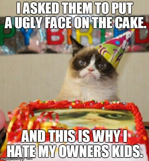 cats hate kids - Cat - IASKED THEM TO PUT AUGLY FACE ON THE CAKE BR AND THISIS WHY HATE MY OWNERS KIDS imgflip comap Co