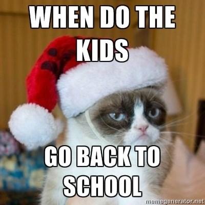 cats hate kids - Cat - WHEN DO THE KIDS GO BACK TO SCHOOL memegenerator.net