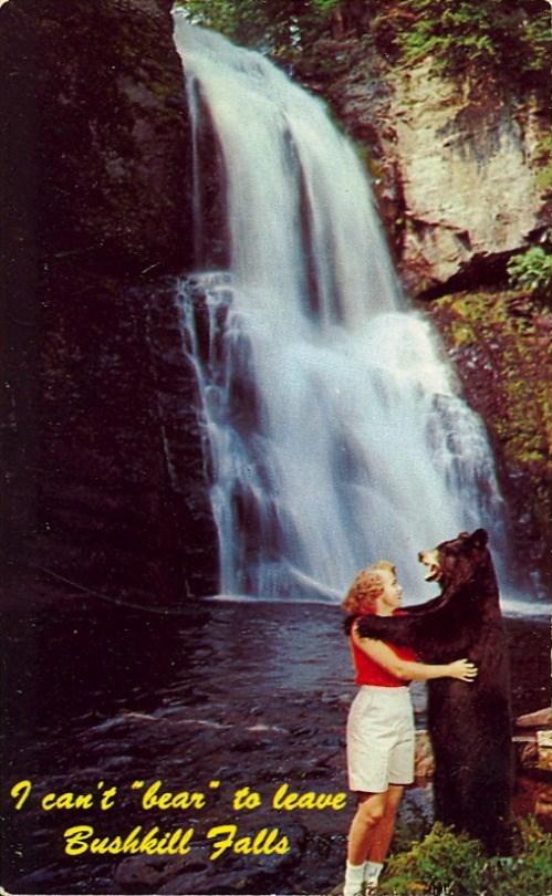 Waterfall - 9 can't bear to leave Bushkill Falls