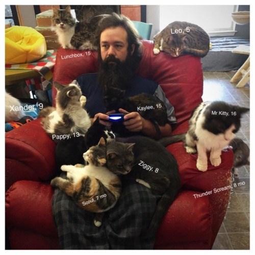 Companion dog - Lea,5 Lunchbox, 15 Xander 9 Kaylee, 15 Mr Kitty. 16 Pappy, 13 Ziggy, 8 Scout, 7 mo Thunder Scream, 8 mo