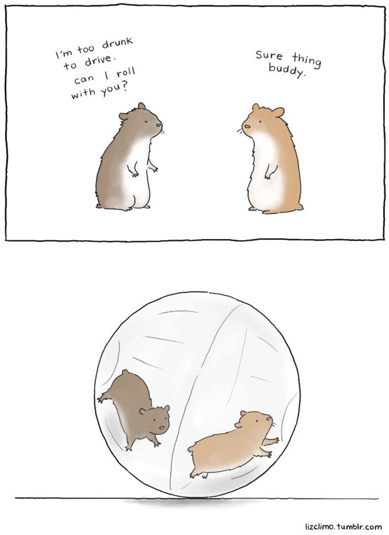 Diagram - I'm too drunk to drive I roll Sure thing buddy. can with you? lizclimo.tumblr.com
