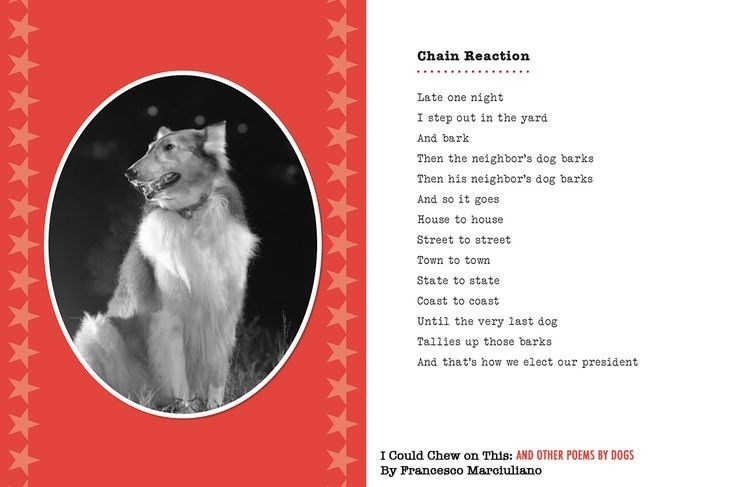 dog poem - Canidae - Chain Reaction Late one night I step out in the yard And bark Then the neighbor's dog barks Then his neighbor's dog barks And so it goes House to house Street to street Town to towm State to state Coast to coast Until the very last dog Tallies up those barks And that's how we elect our president I Could Chew on This: AND OTHER POEMS BY DOGS By Francesco Marciuliano