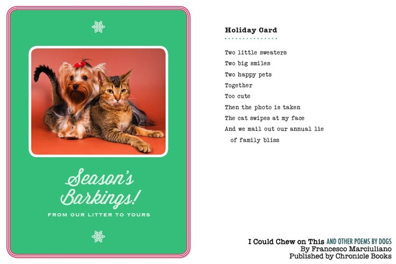 dog poem - Cat - Holiday Oard Two little sweaters Two big smiles Two happy pets Together Too cute Then the photo is taken The cat swipes at my face And we mail out our annual lie of family bliss Season's Barkings! FROM OUR LITTER TO YOURS I Could Chew on This AND OTHER POEMS BY DOGS By Francesco Marciuliano Published by Chronicle Books