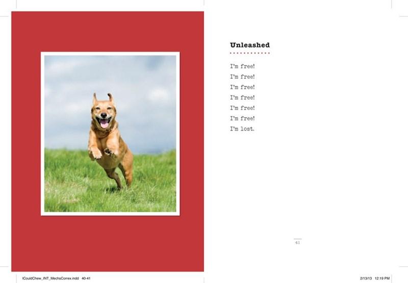 dog poem - Canidae - Unleashed I'm free! I'm free! I'm free! I'm free! I'm free! I'm free! I'm lost 41 ICouldChew INT MechsCorrex.indd 40-41 2/13/13 12:19 PM