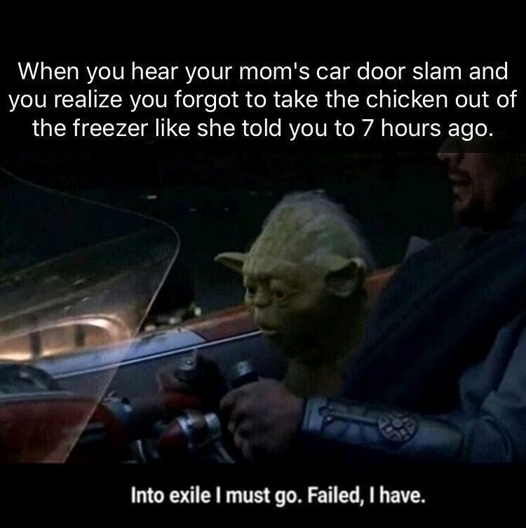 meme - Photo caption - When you hear your mom's car door slam and you realize you forgot to take the chicken out of the freezer like she told you to 7 hours ago. Into exile I must go. Failed, I have.