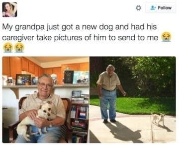 dog memes old man holding white puppy My grandpa just got a new dog and had his caregiver take pictures of him to send to me