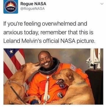 dog memes man in orange astronaut suit being licked by two dogs- Rogue NASA @RogueNASA NASA If you're feeling overwhelmed and anxious today, remember that this is Leland Melvin's official NASA picture.