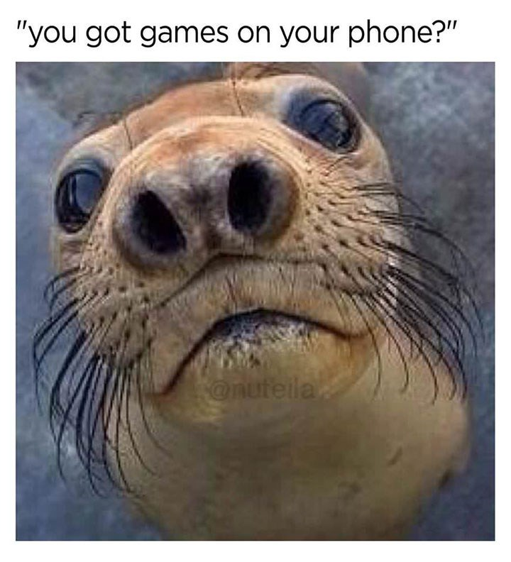 "meme - Steller sea lion - ""you got games on your phone?"" @nufeila"
