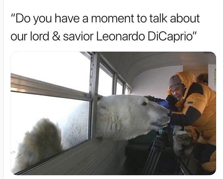 "meme - Polar bear - ""Do you have a moment to talk about our lord & savior Leonardo DiCaprio"""