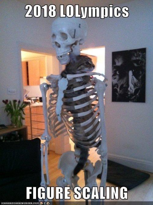 Skeleton - 2018 LOLympics FIGURE SCALING ICANHAECHEEZEURGEROOM