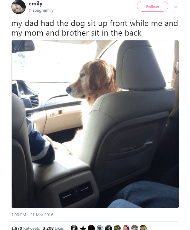 Vehicle door - emily Follow @spaghemily my dad had the dog sit up front while me and my mom and brother sit in the back 1:00 PM 21 Mar 2016 1,870 Retweets 3,208 Likes