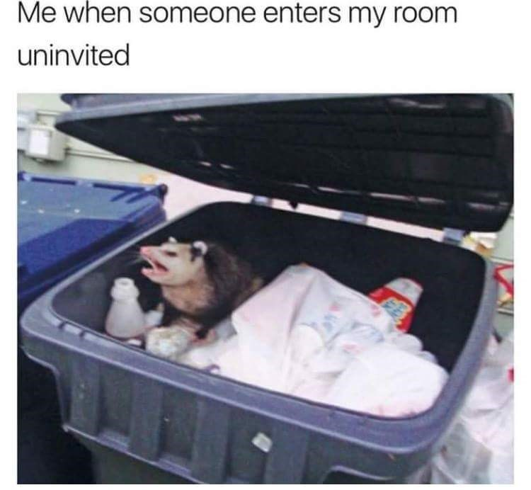 meme - Baggage - Me when someone enters my room uninvited B