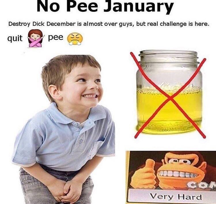 meme - Child - No Pee January Destroy Dick December is almost over guys, but real challenge is here. pee quit COM Very Hard