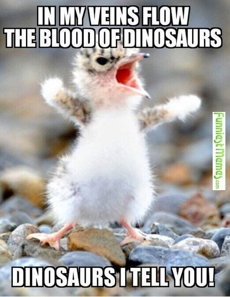 meme - Photo caption - IN MY VEINS FLOW THE BLOOD OF DINOSAURS DINOSAURS ITELL YOU! FunniestMemes.com