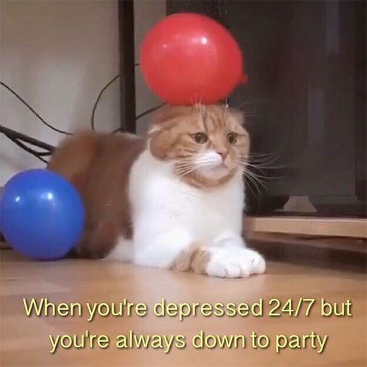 meme about being sad but wanting to party with pic of miserable looking cat with a balloon stuck to its head